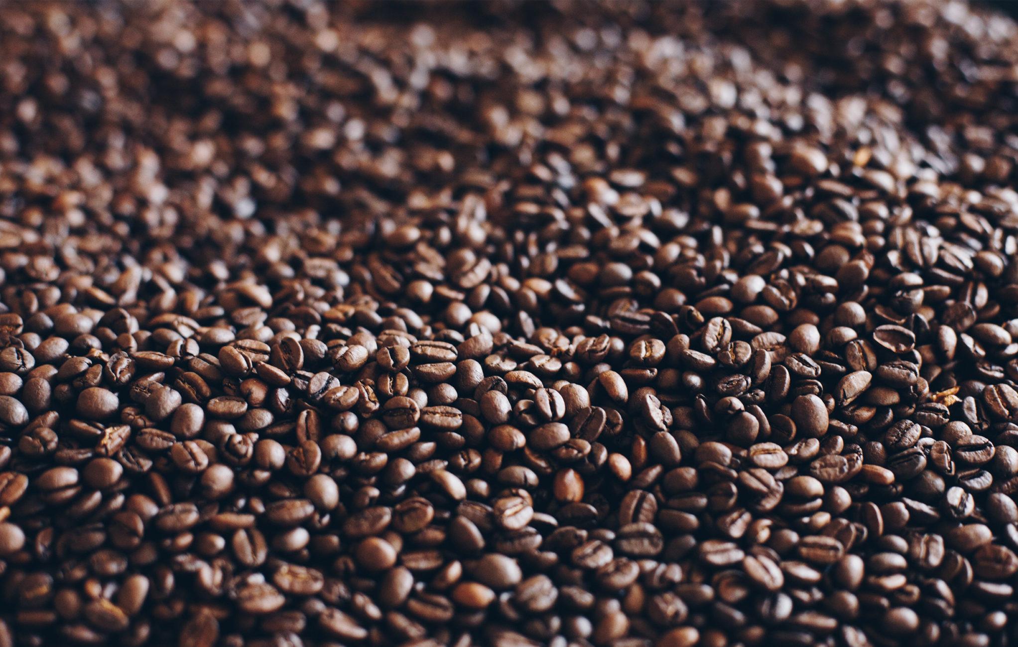 koffiebonen-tuincafe